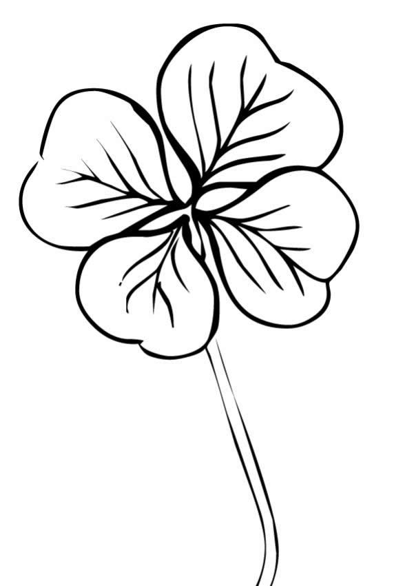Printable Four Leaf Clover Coloring Pages