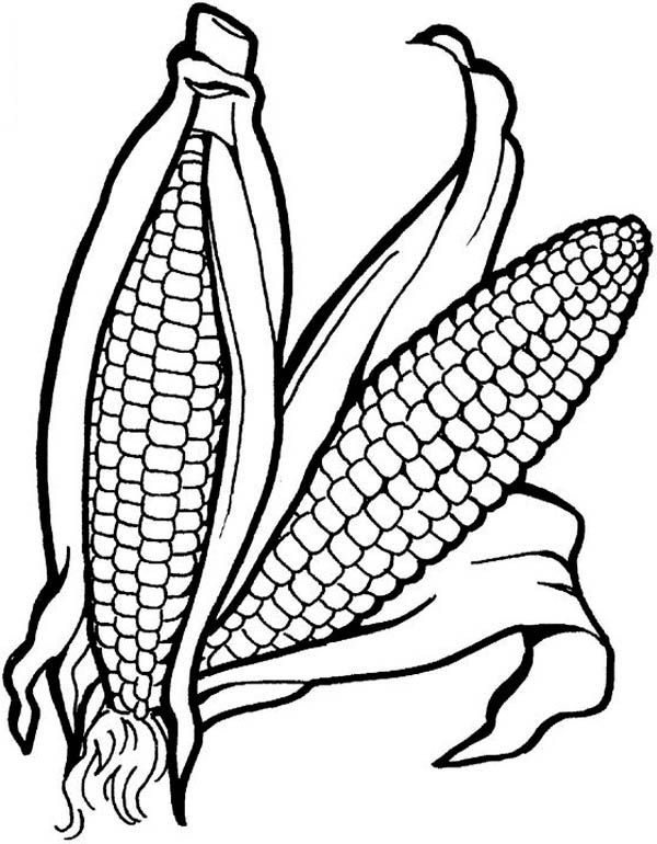Corn Vegetable Coloring Pages