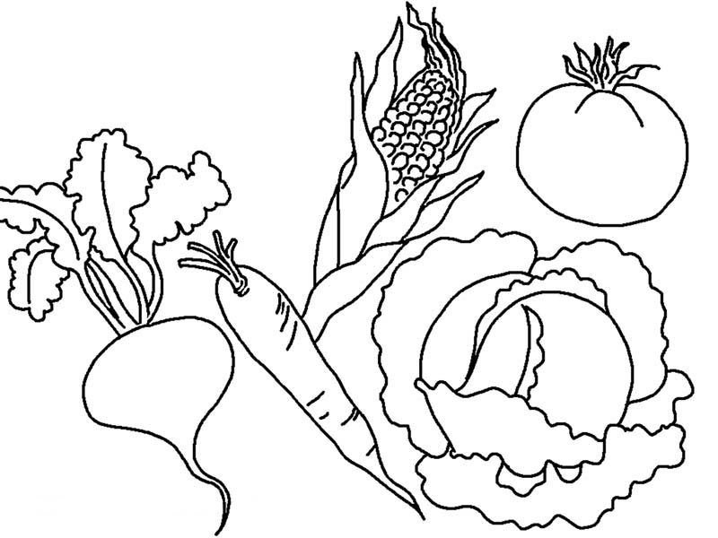 Free Vegetable Coloring Pages Printable