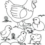 Baby Chicks Coloring Page