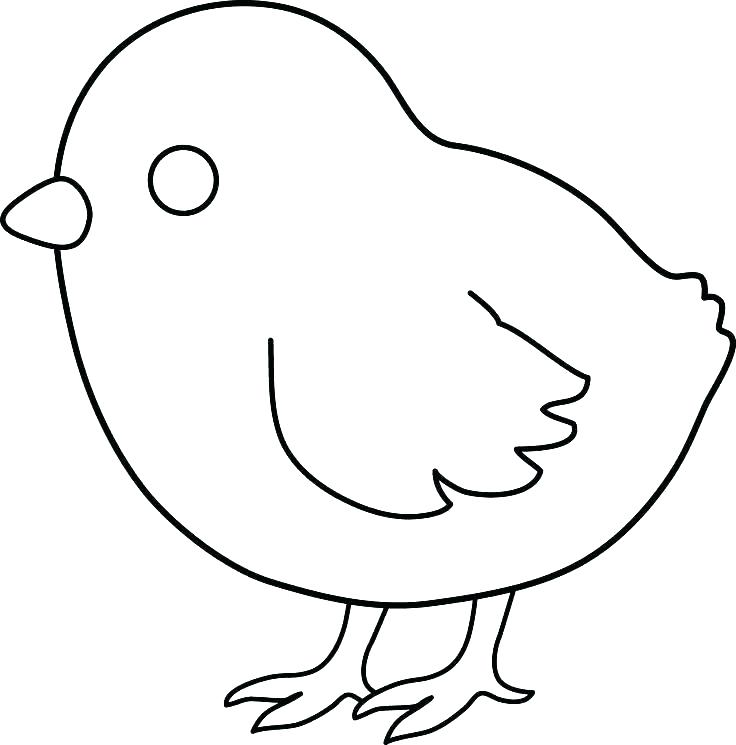 Chick Coloring Page Printable