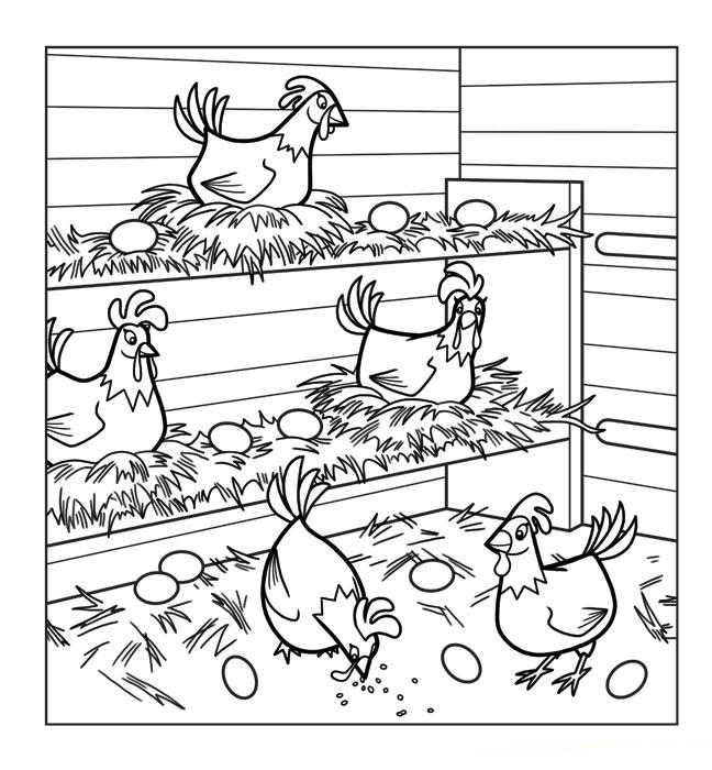 Chicken Coloring Pages - Best Coloring Pages For Kids