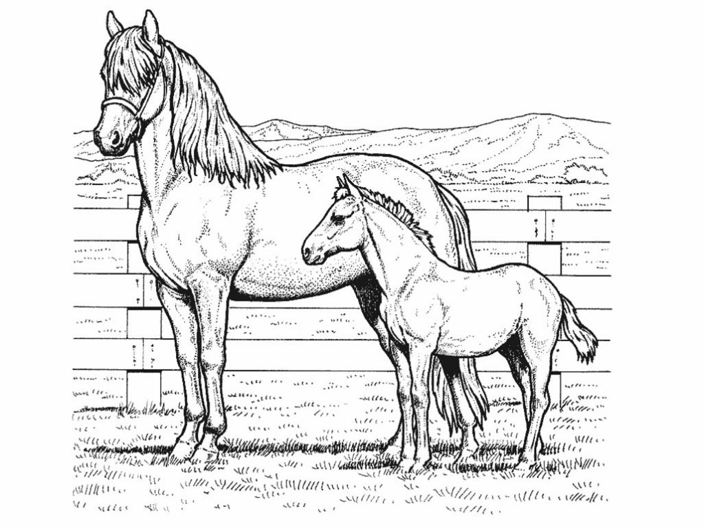Mother and Pony Coloring Pages