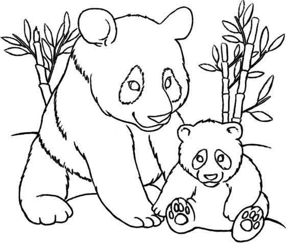 Panda And Baby Coloring Pages