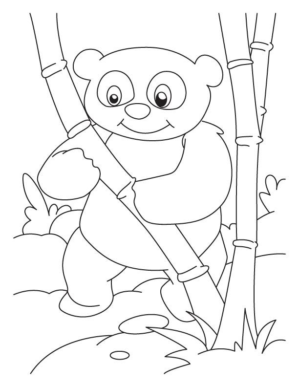 Printable Panda Coloring Pages