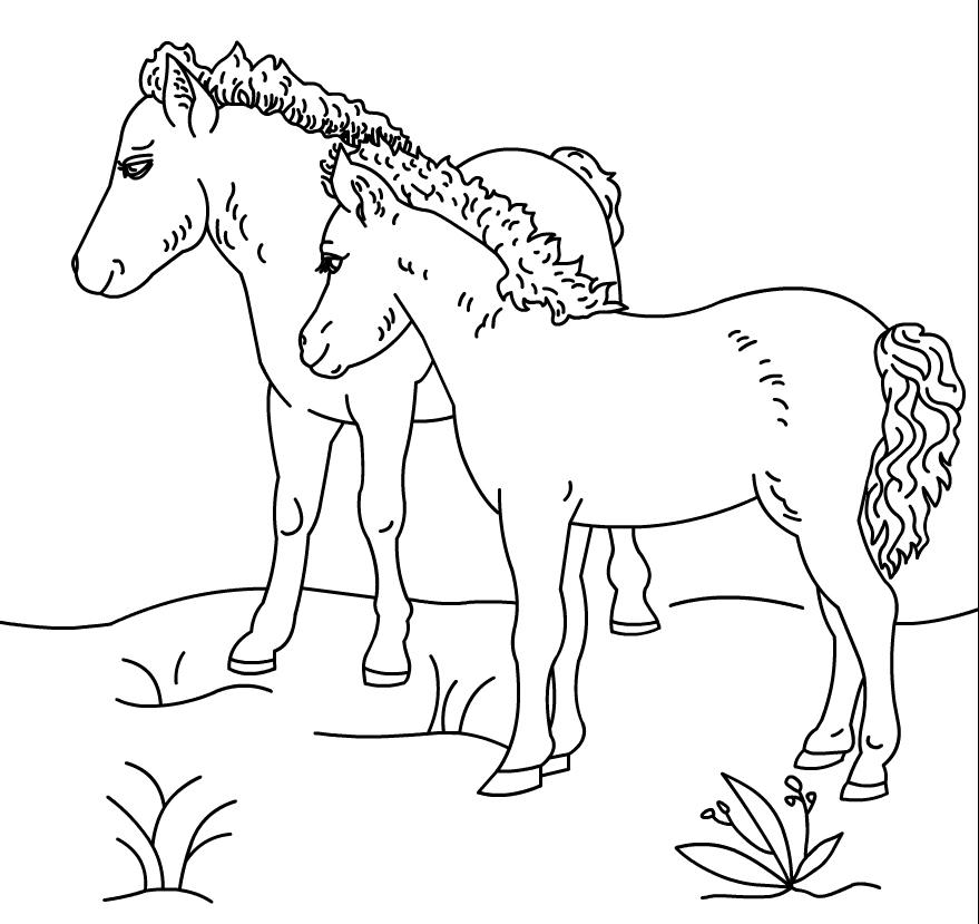 Printable Ponies Coloring Page