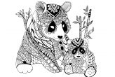 Zentangle Panda Coloring Page for Adults