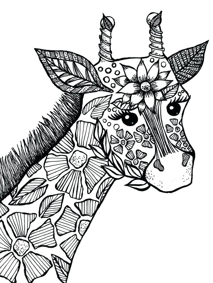coloring book animals printable pages - photo#4