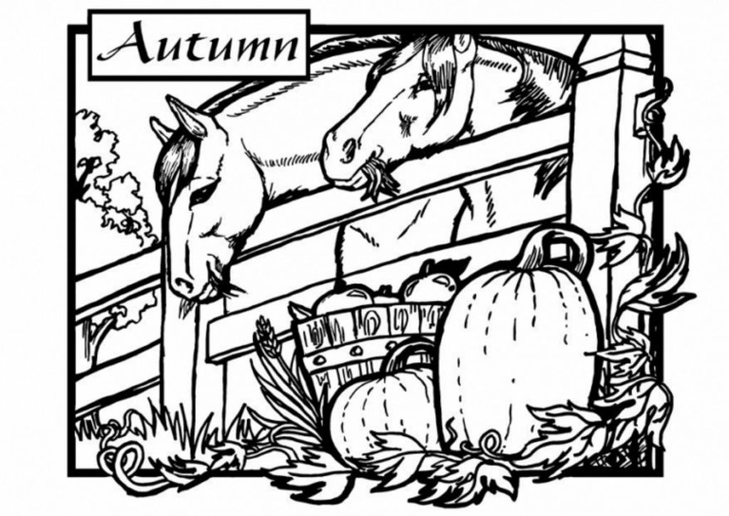 Autumn On The Farm Coloring Page For Adults