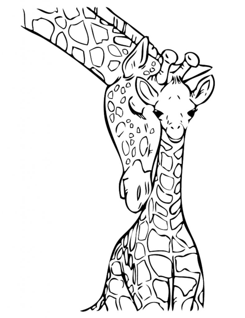 Baby Giraffe - Jungle Coloring Pages