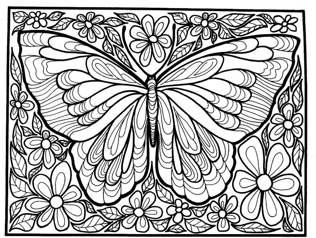 Butterfly Insect Coloring Pages