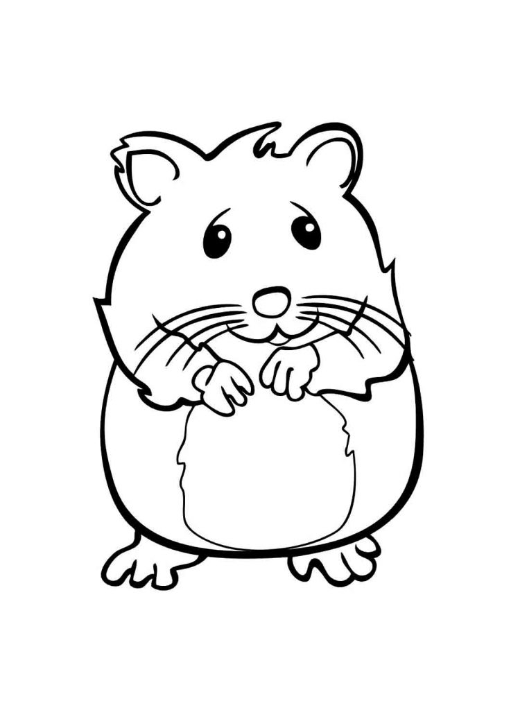 Cute Pet Coloring Page - Hamster