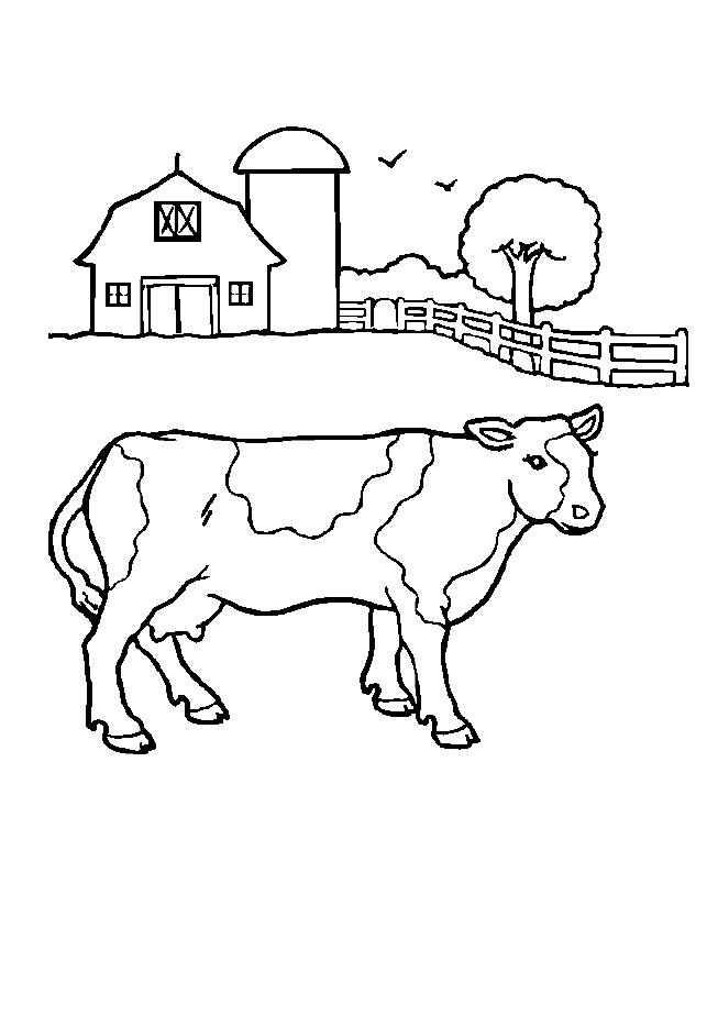 Farm Cow Coloring Page