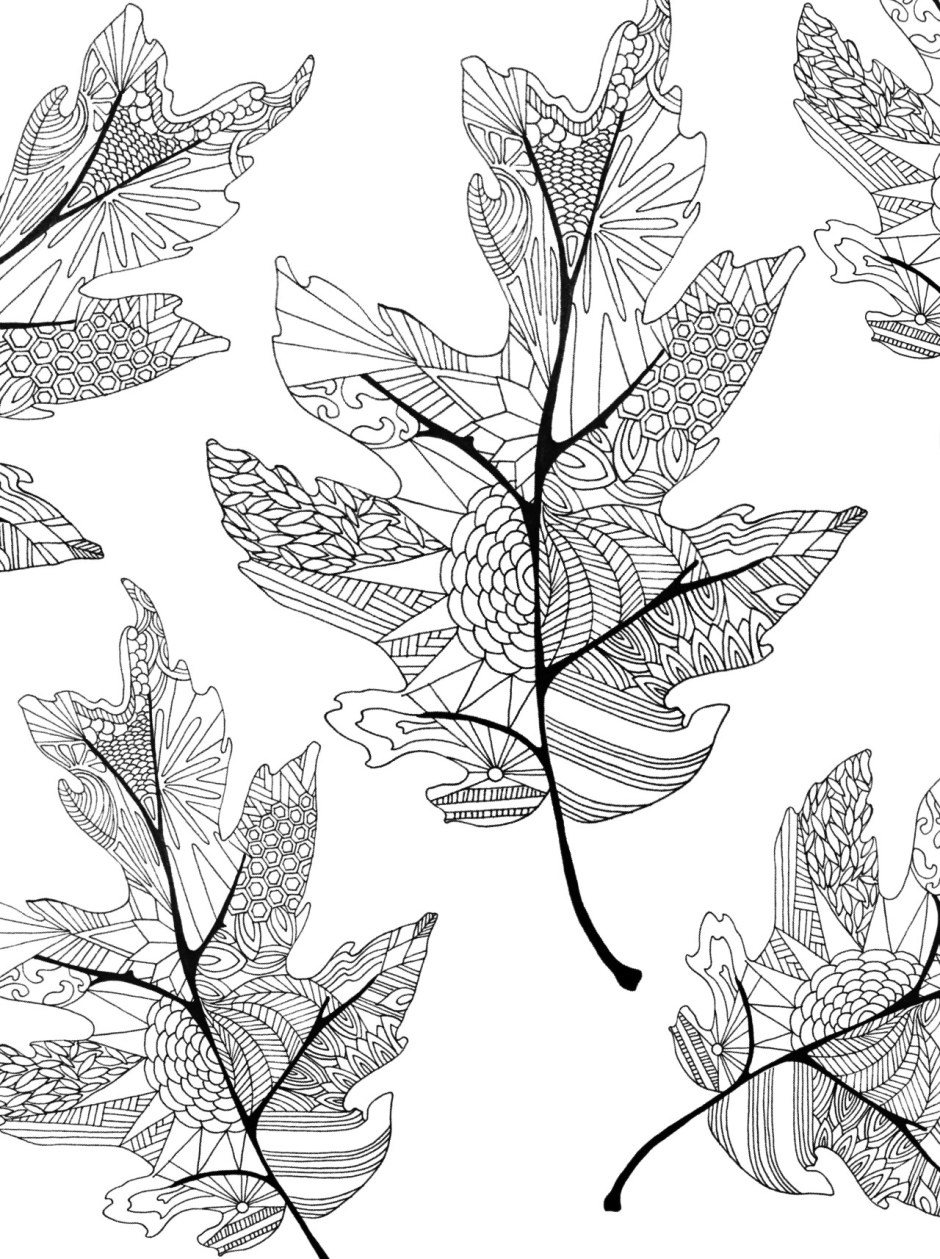 Fall Coloring Pages for Adults - Best Coloring Pages For Kids
