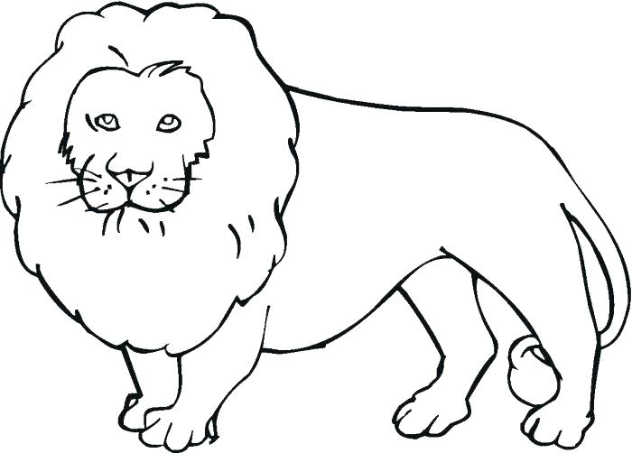 Lion - Animal Coloring Pages