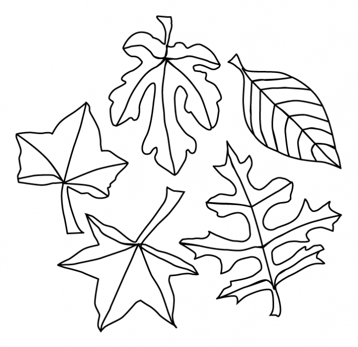 Fall leaves blowing coloring pages ~ Fall Leaves Coloring Pages - Best Coloring Pages For Kids