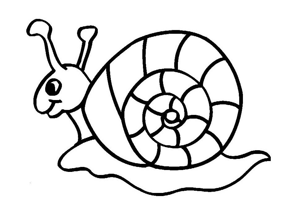 Snail Insect Coloring Pages
