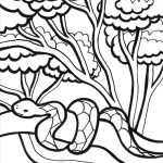 Snake Jungle Coloring Pages