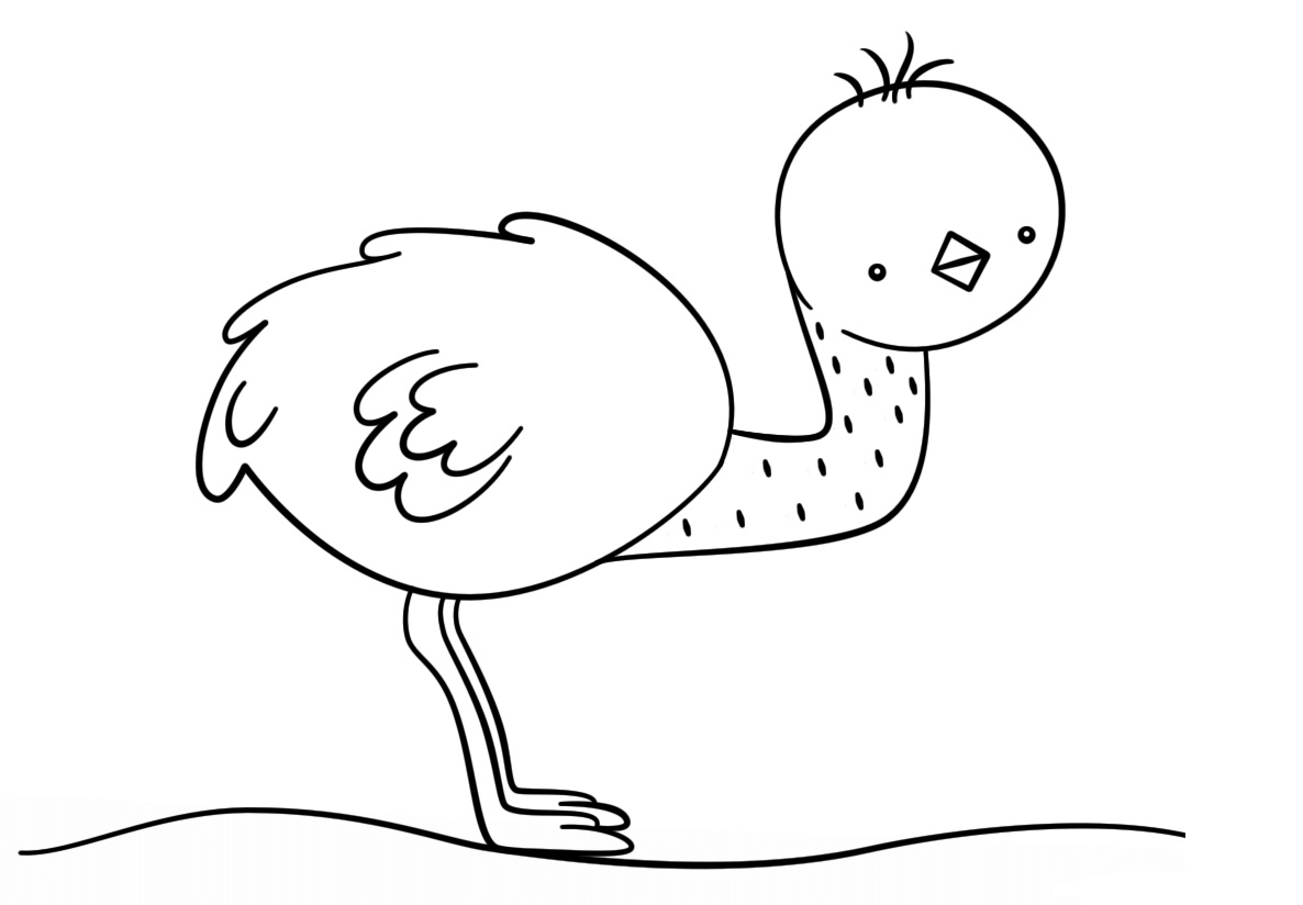 Cute Animal Coloring Pages Best