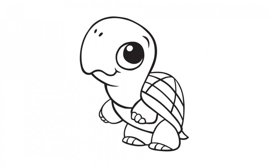 Cute Baby Turtle Coloring Page