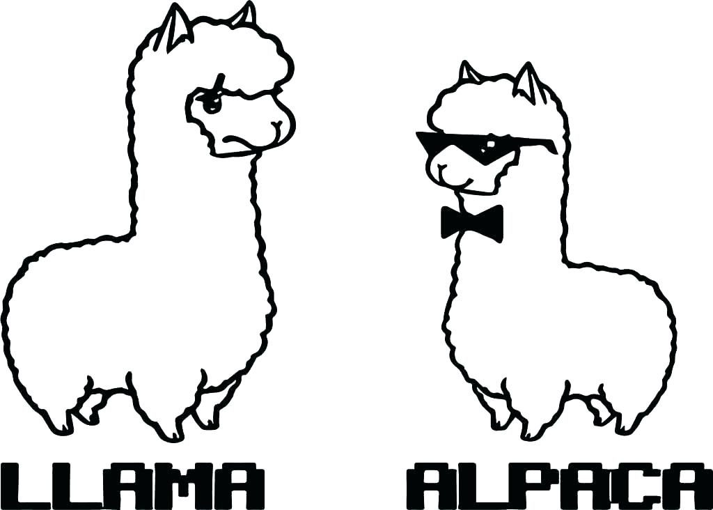 alpaca coloring pages for kids - photo#1
