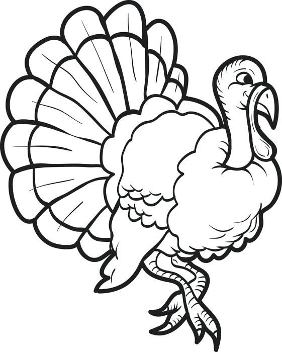 Turkey - November Coloring Pages