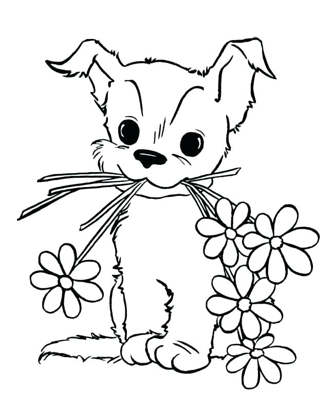 Baby Animal Coloring Pages Dog