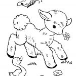 Baby Animal Coloring Pages Lamb
