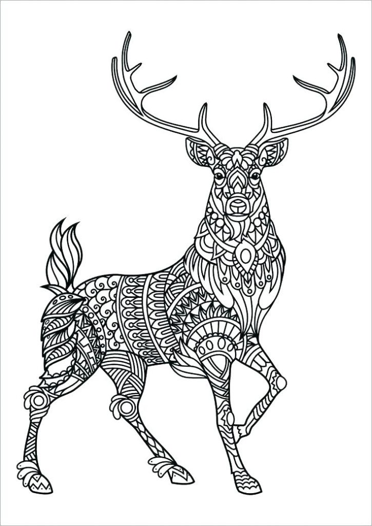 Coloring Pages for Adults Online