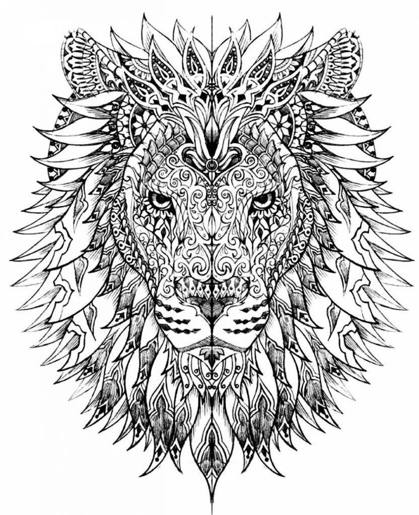Lion Coloring Pages for Adults