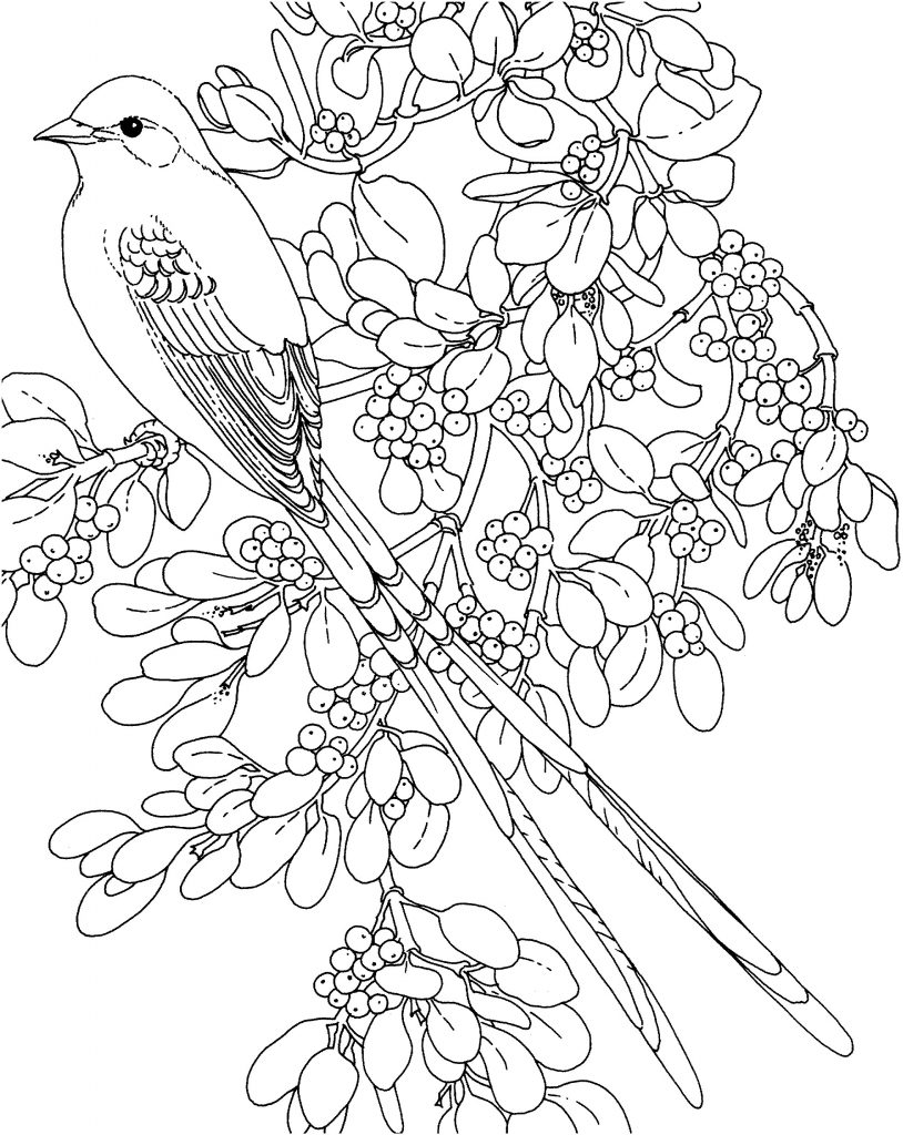 Mistletoe Christmas Coloring Page
