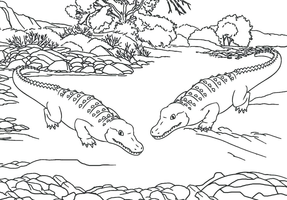 zoo animals coloring pages best coloring pages for kids. Black Bedroom Furniture Sets. Home Design Ideas