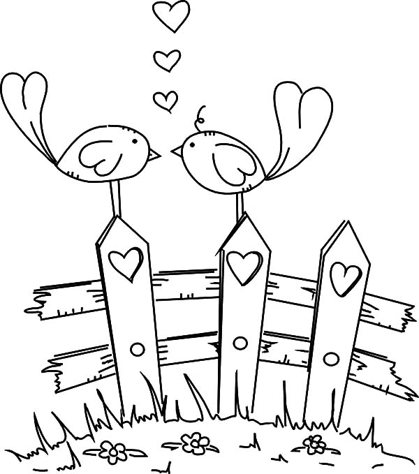 Bird Love Coloring Page
