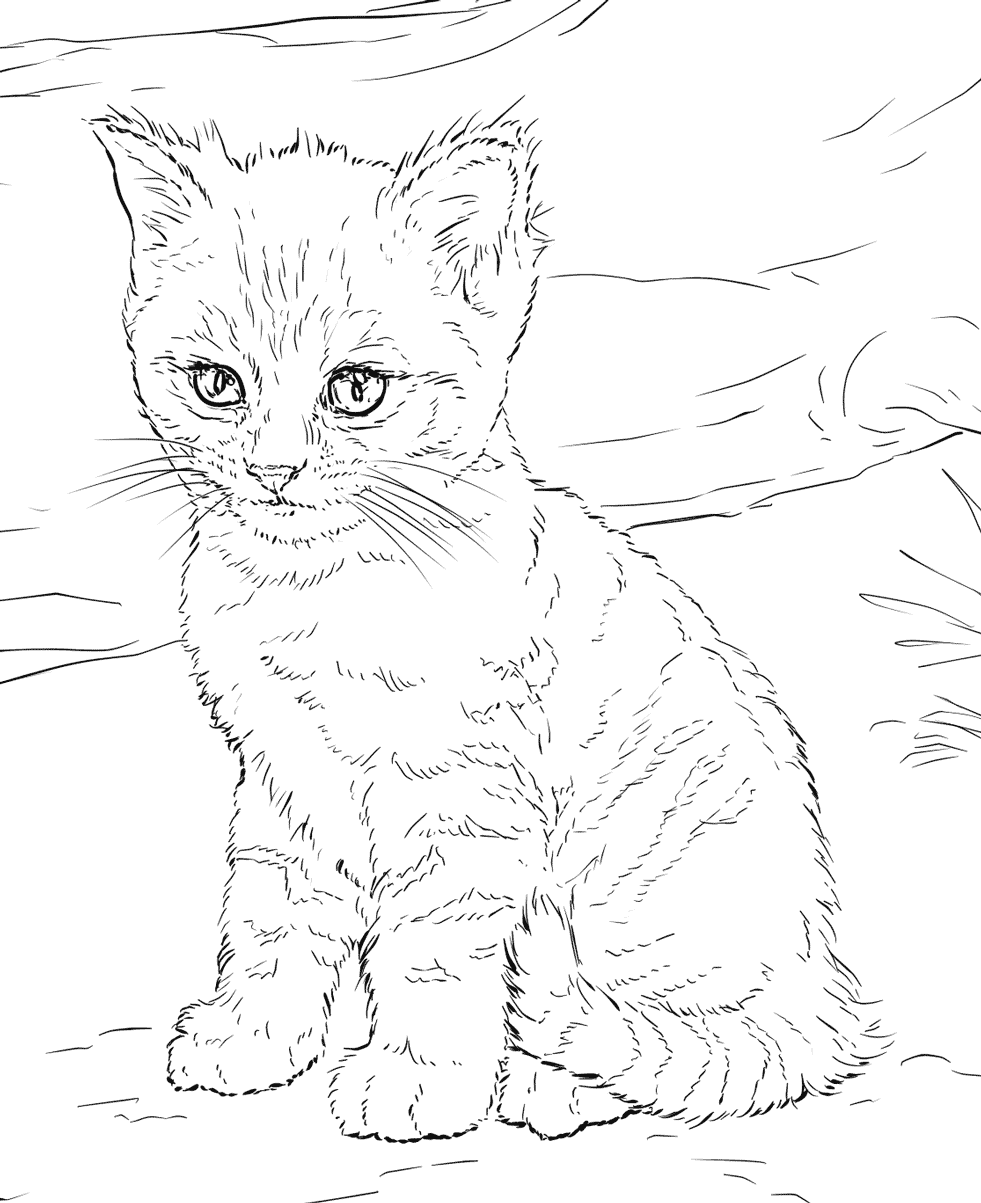 cat dreaming coloring pages - photo#39