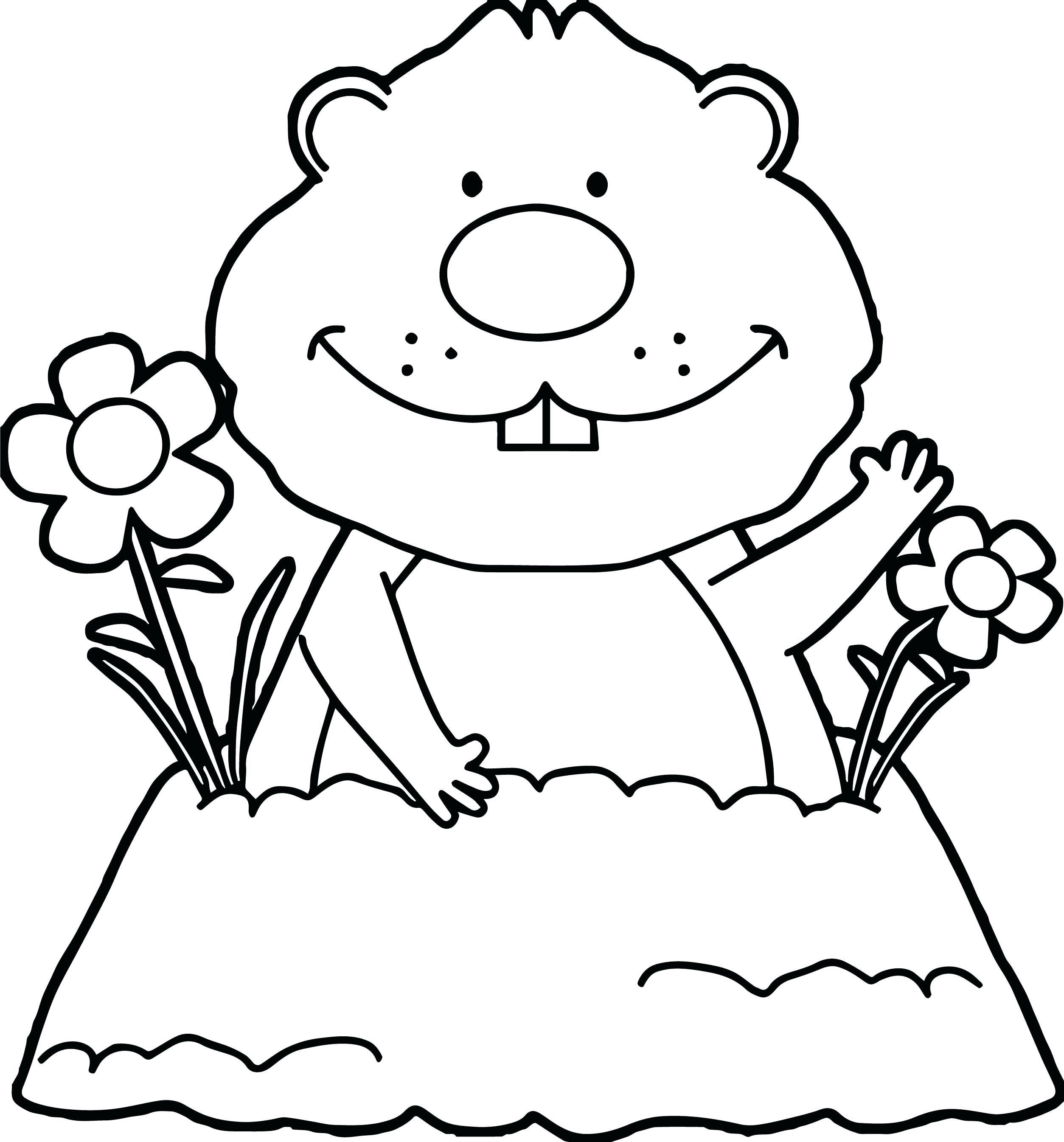 groundhog day coloring sheet – royaltyhairstore.com | 2690x2507