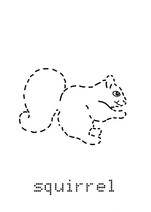 Preschool Squirrel Tracing Worksheet