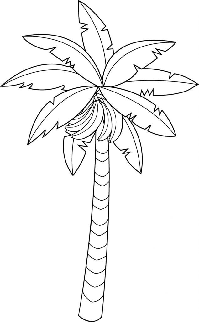 Banana Fruit Tree Coloring Pages