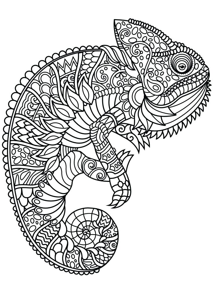 animal mandala coloring pages best coloring pages for kids. Black Bedroom Furniture Sets. Home Design Ideas