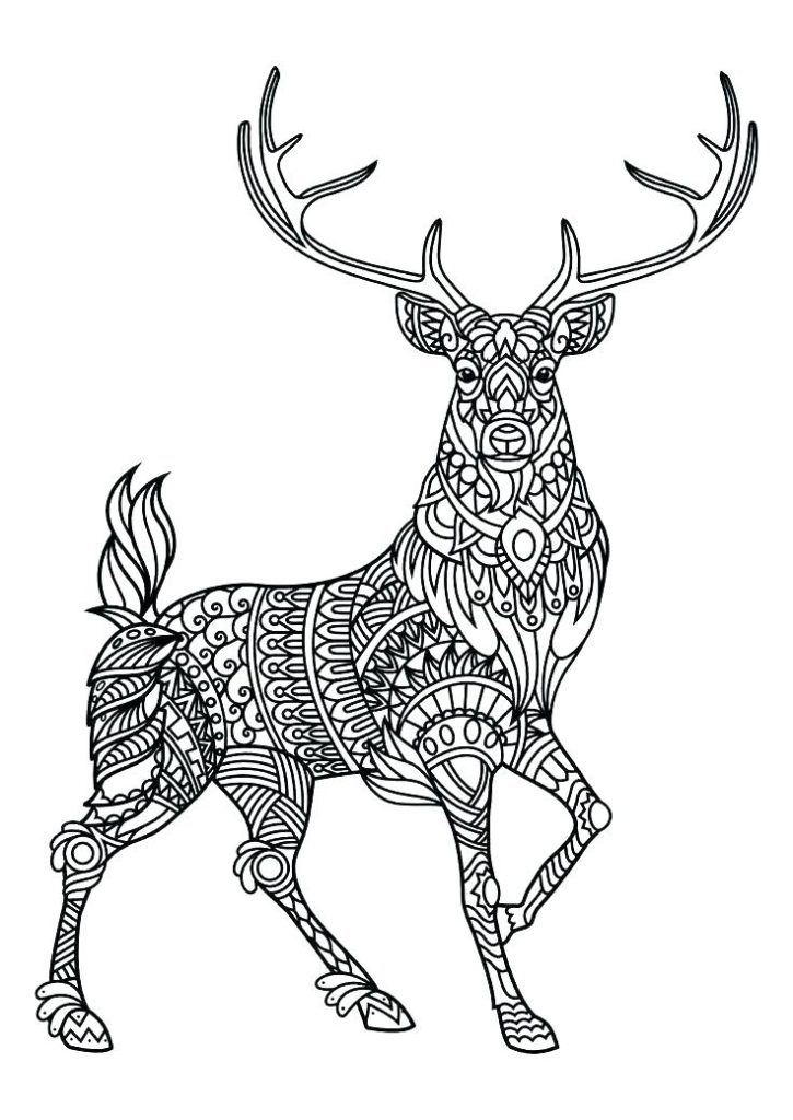 Deer Animal Coloring Pages for Adults