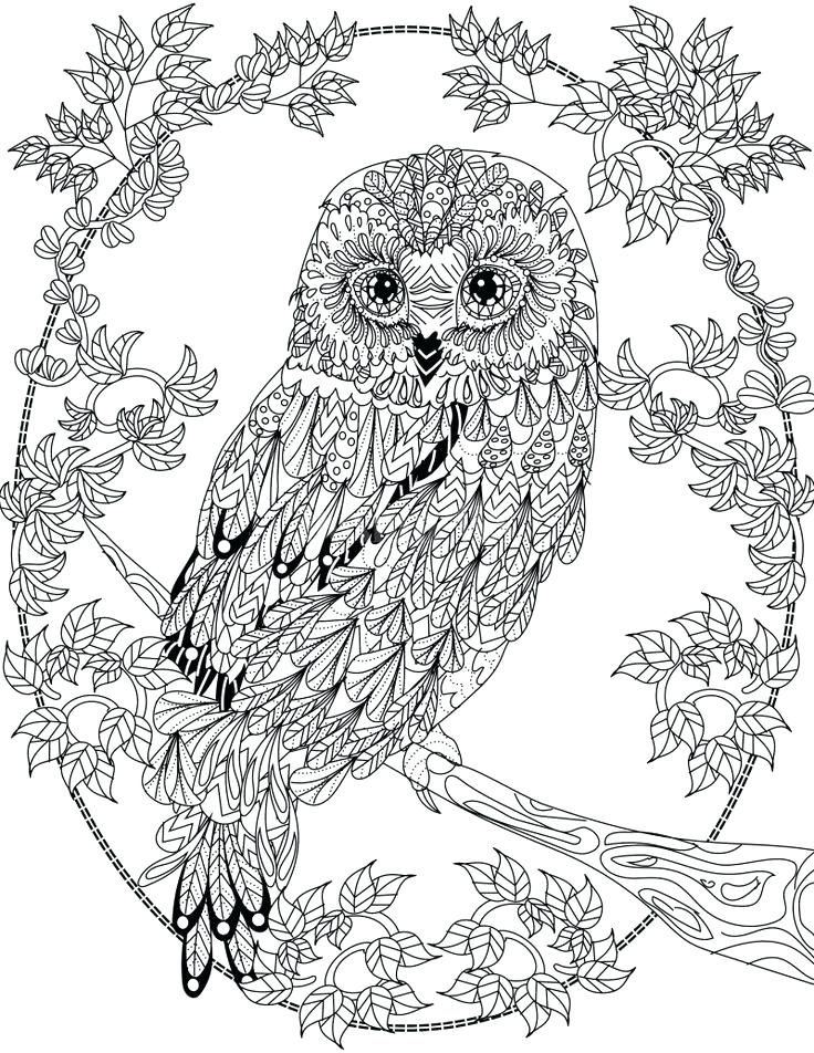 This is a graphic of Clean Animal Mandala Coloring Book