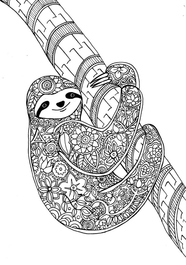 Sloth Animal Coloring Page for Adults