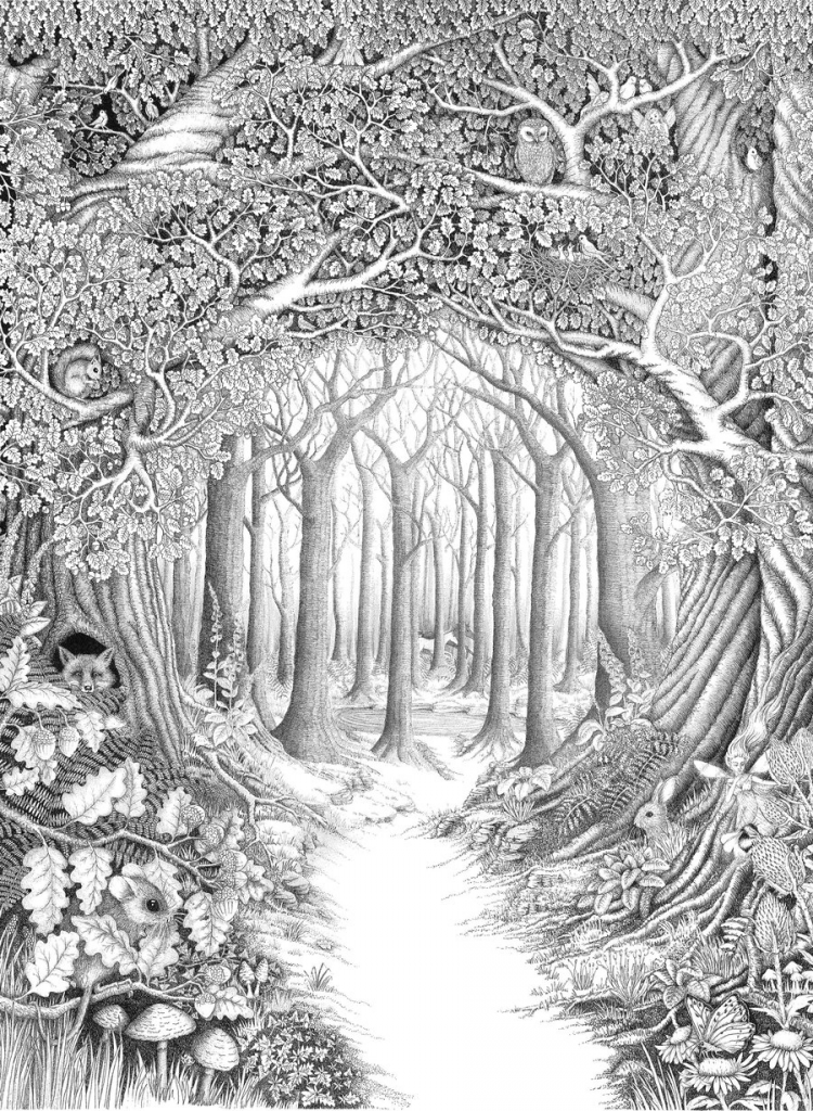 Forest Scenery Coloring Pages for Adults