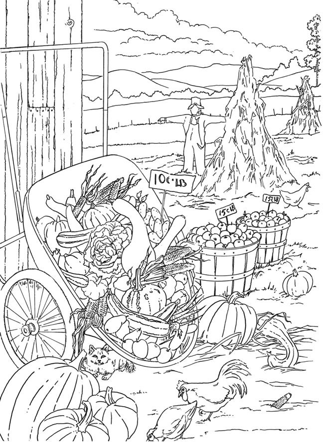 Harvest Scenery Coloring Page for Adults