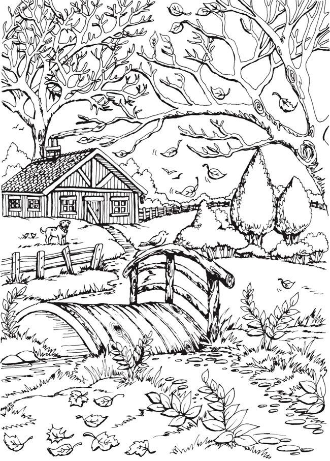 Rural Scenery Coloring Page for Adults
