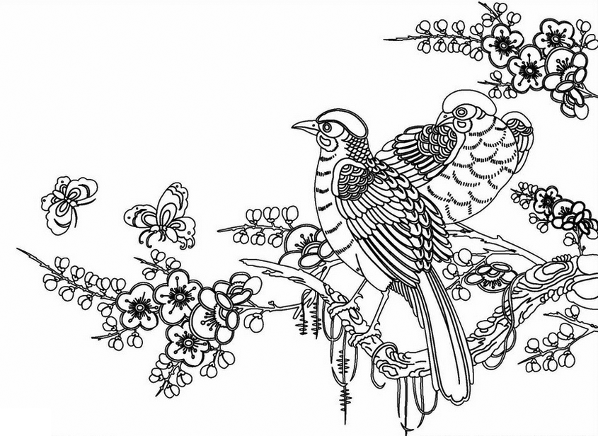 Spring Birds in April Coloring Page