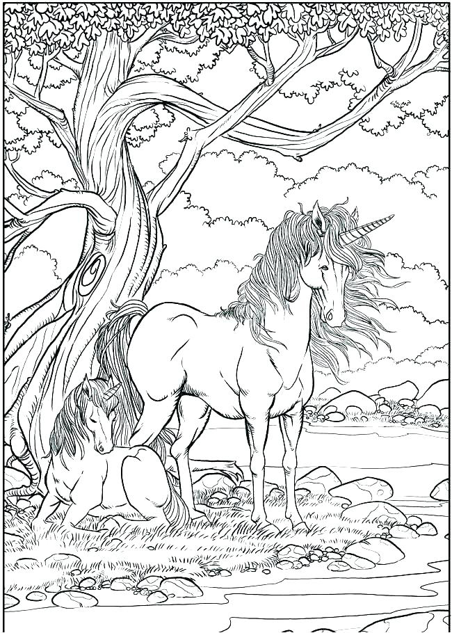 Unicorn Scene Coloring Page for Adults