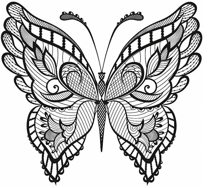 Butterfly Coloring Pages - Free Printable - from Cute to Realistic ... | 640x715