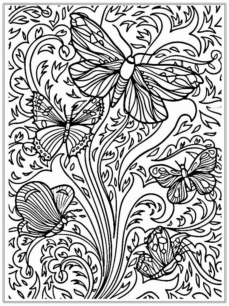 Butterfly Coloring Page Adult Coloring