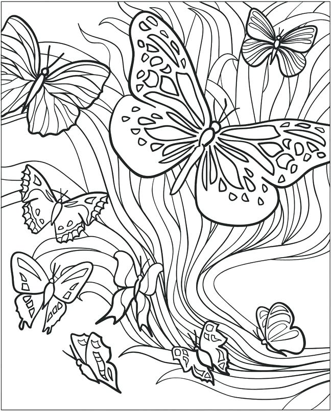 Butterfly Coloring Pages Adult Coloring