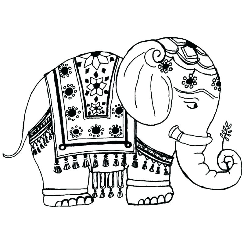 Cute Elephant Coloring Pages for Adults